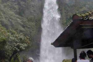 Bali: Lovina Beach and Bedugul Mountain Private Tour
