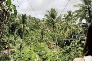 Bali: Mengwi Taman Ayun Site and Sangeh Monkey Forest Tour