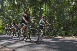 Bali: Mountain Bike Tour and River Rafting with Lunch