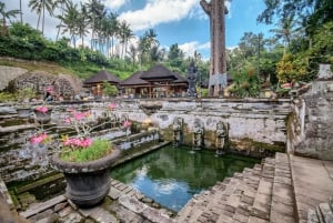 Bali: Nature, Art, History and Culture Small Group Tour