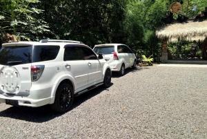 Bali: Private Transfer Between Ubud and Seminyak