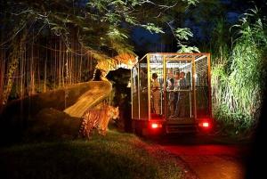 Bali: Return Private Transfer for Night Safari