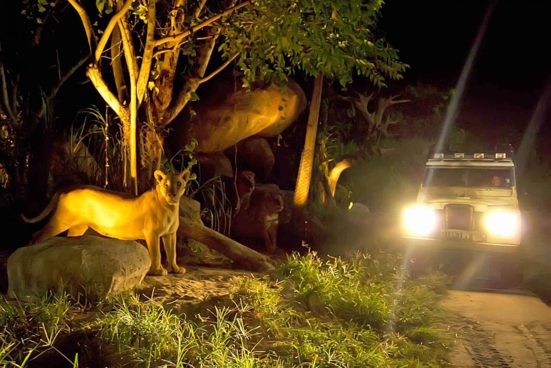 Bali Safari and Marine Park: Night Safari Ticket