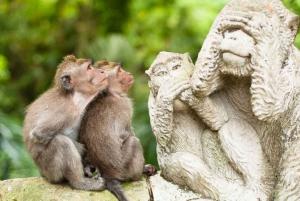 Bali: Small-Group Ubud and Tanah Lot Guided Tour