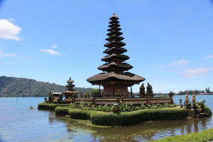 Best of Bali: Private Customized Full-Day Tour