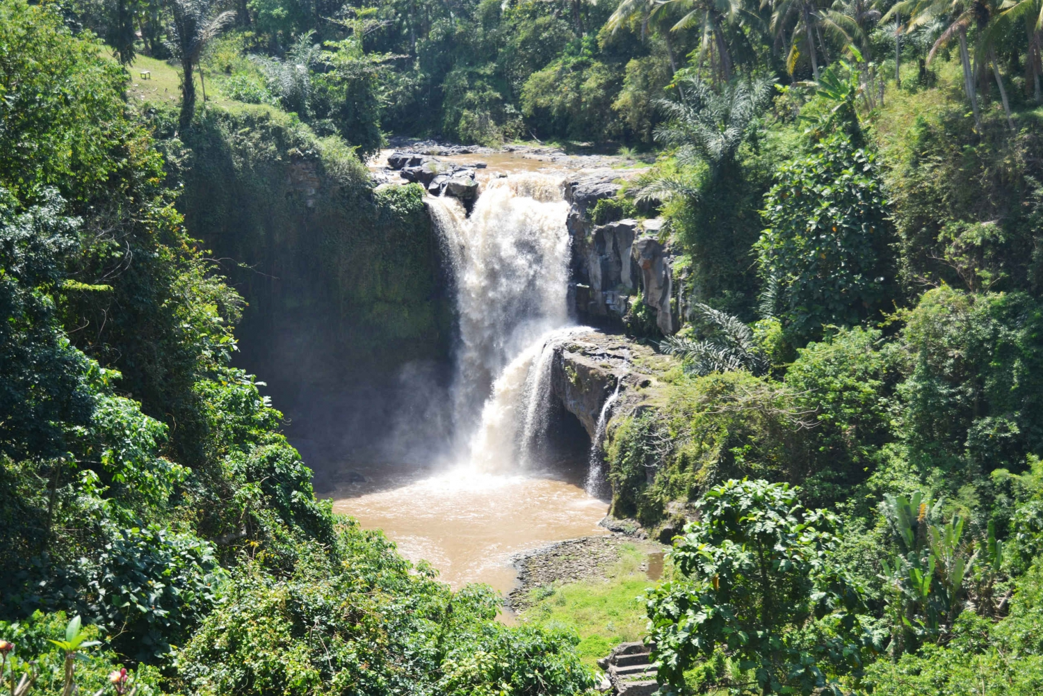 Best of Central Waterfall, Elephant Cave & Rice Fields
