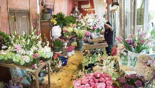 Bloomz Fine Flowers