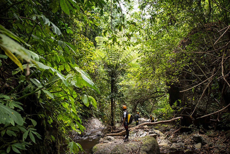 Denpasar: Tamata Adventure Canyoning