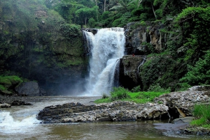 East Bali: Snorkeling, Canyoning, and Waterfall Day Trip