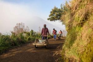 From Bali: 24-Hour Trip to Ijen Crater & Javanese Breakfast