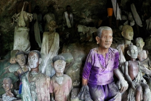 From Bali: Private 3-Day Tour of Tana Toraja