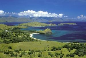 From Labuan Bajo: Day Trip to Komodo and Rinca Island
