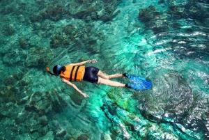 From Menjangan Island Private 3-Day Tour