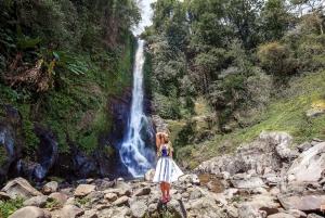 Gitgit and Alingaling Waterfalls Small Group Tour