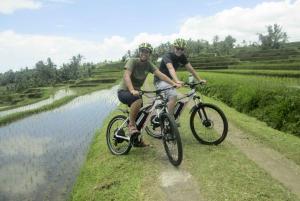 Jatiluwih Full-Day E-Bike and Trekking Tour