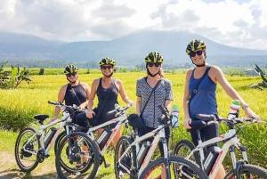 Jatiluwih Rice Terraces 1-Hour Electric Bike Tour