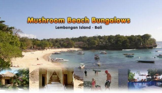 Mushroom Beach Bungalows Lembongan Bali
