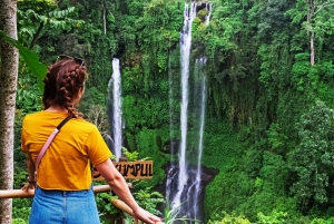 North Sekumpul Waterfalls and Ulun Danu Temple Tour