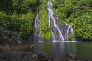 Northern Charm: Lake Bratan, Handara Gate, Waterfall & Swing