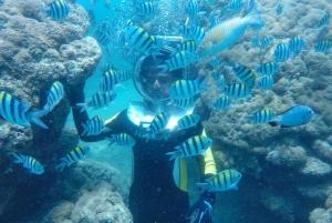 Nusa Dua: Underwater Sea Walking Experience