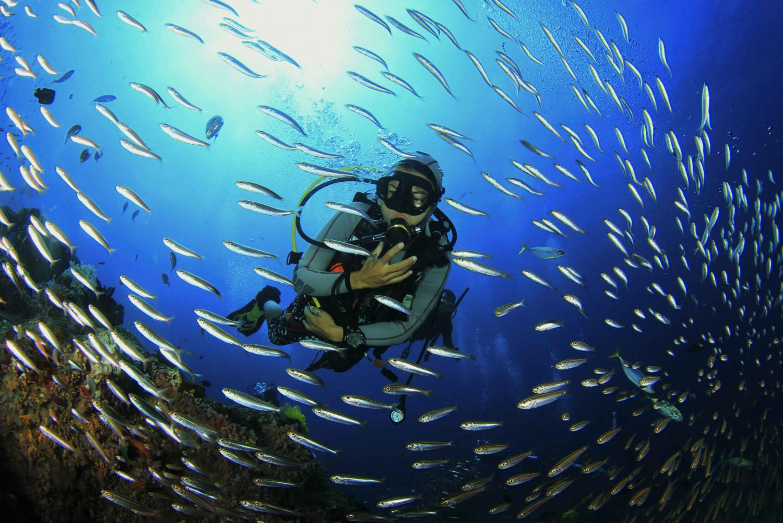 Padangbai Blue Lagoon Beginner's Dive Experience
