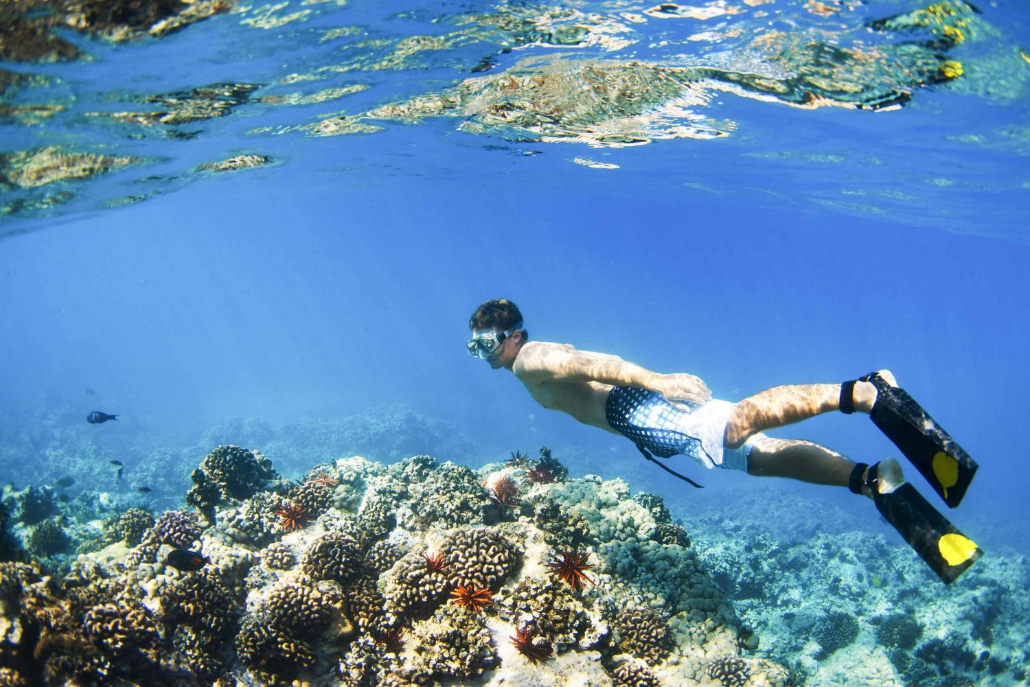 Padangbai Blue Lagoon Snorkeling Day Trip