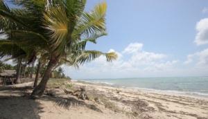 Rote Island Properties Bali