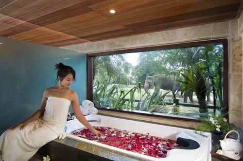 Spa at Elephant Safari Lodge