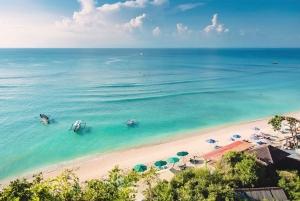 Swim with Sharks & Dreamland Beach