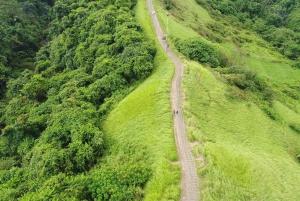 Ubud: Campuhan Ridge to Ubud Monkey Forest Walking Tour