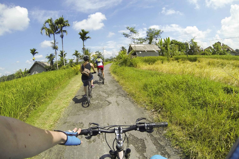 Ubud: Electric Bike Tour to Tegallalang Rice Terraces