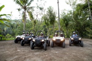Ubud: Full-Day Mountain Biking and Jungle Buggy Experience
