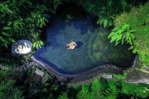 Ubud: Half-Day Zipline and Jungle Swing Adventure