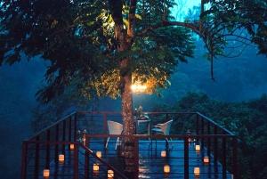 Ubud: Romantic Dinner on a Forest Tree Deck