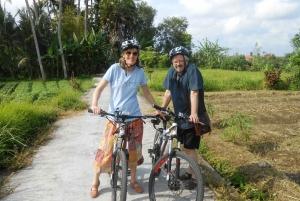 Ubud: South E-Bike Tour & Whitewater Rafting