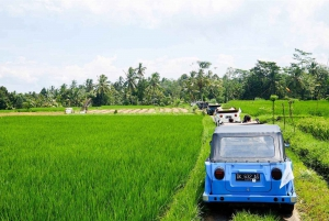 Vintage VW Jeep Countryside Safari