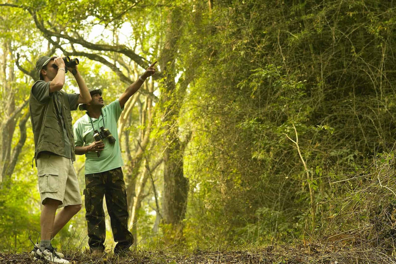 West Bali National Park: Trekking & Bird Watching 2-Day Tour