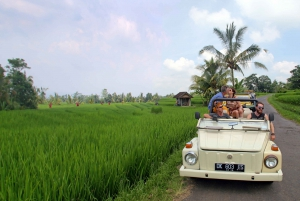 West Discover the Untouched by VW Cabrio Jeep