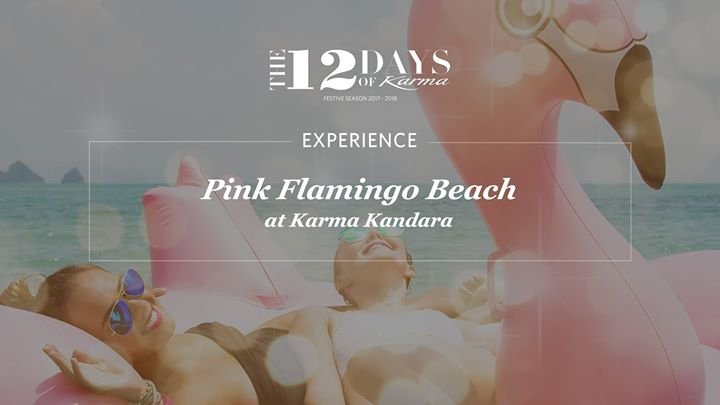 12 Days of Karma - Pink Flamingo Beach