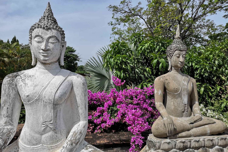 Ayutthaya Temples & Shrimp Fishing Private Tour from Bangkok