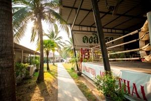 Bangkok: 2 Hour Muay Thai Lesson Led by Boxing Champion