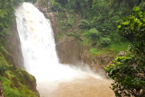 Khao Yai National Park: 2-Day Private Tour from Bangkok
