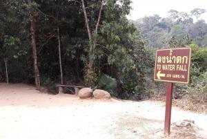 Khao Yai National Park Jungle Trekking Day Trip From Bangkok