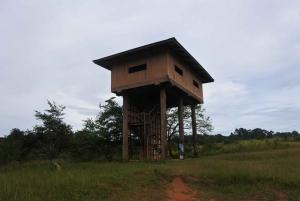 Khao Yai National Park Private Transfer with Optional Trek