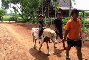 Khao Yai Vineyard Tasting Tour & Horse Farm Visit
