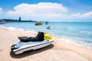 Pattaya & Coral Island 2-Day Private Tour From Bangkok