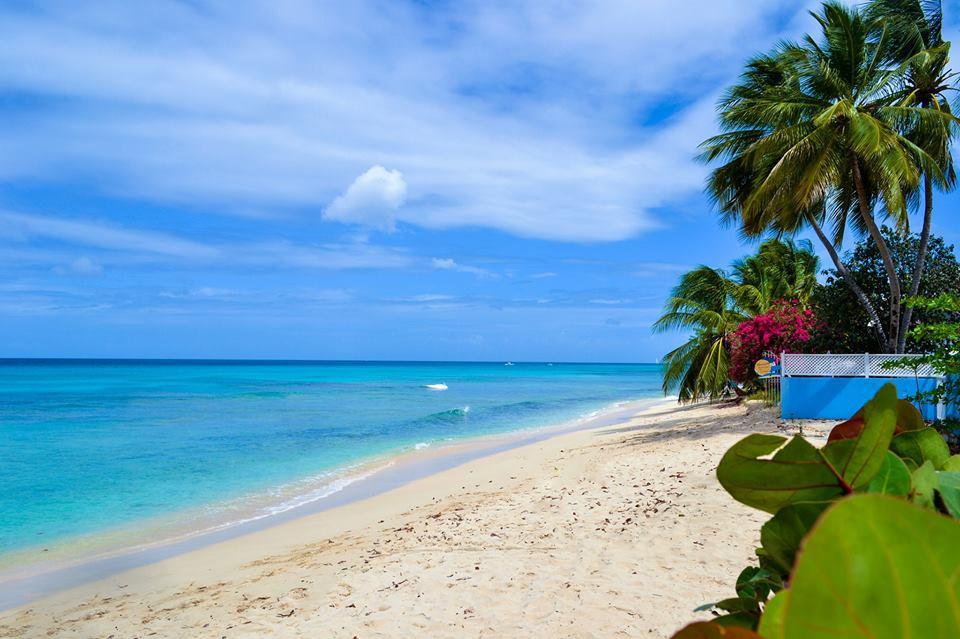 Barbados Tourism Marketing Inc.