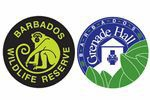 Barbados Wildlife Reserve and Grenade Hall Forest