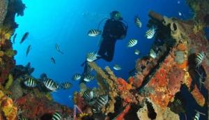 Hazell's Water World Inc. Divers Supply Shop