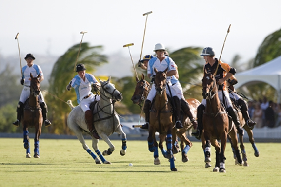 Barbados Polo Season 2018 - February